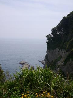 江の島の断崖