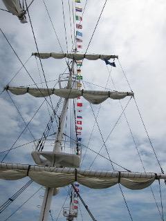 オーシャンプリンスの帆