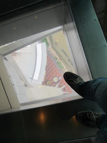 展望台から地上を見下ろす