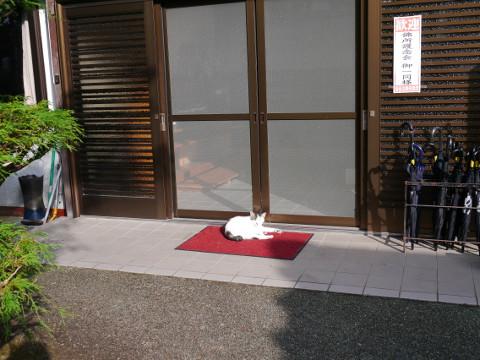 山本坊玄関