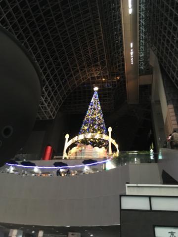 クリスマスツリーを見上げる
