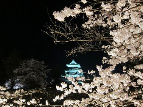 夜の松本城と桜