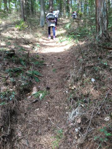 すごい山道を歩く