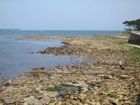 岩場の海岸