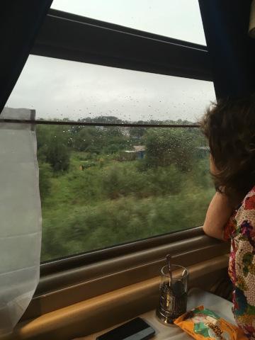 車窓を眺めるおばさん